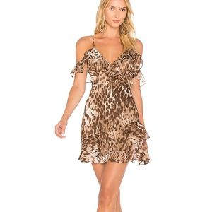 ✨New leopard Majorelle salsa dress